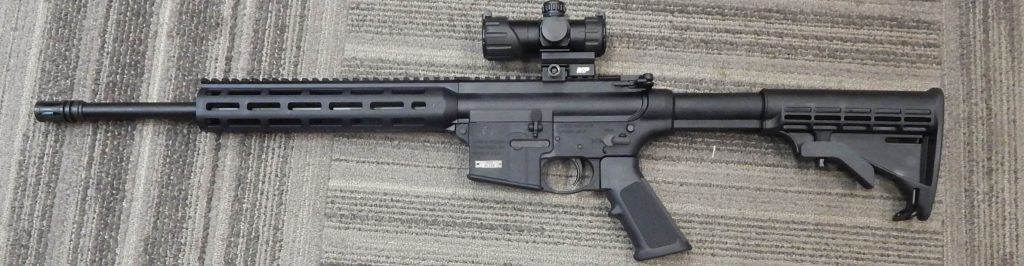 Smith & Wesson M&P 15-22 16 .22LR w/Red Dot